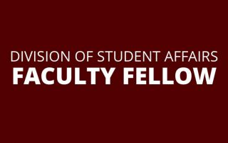 Division of Student Affairs Faculty Fellow