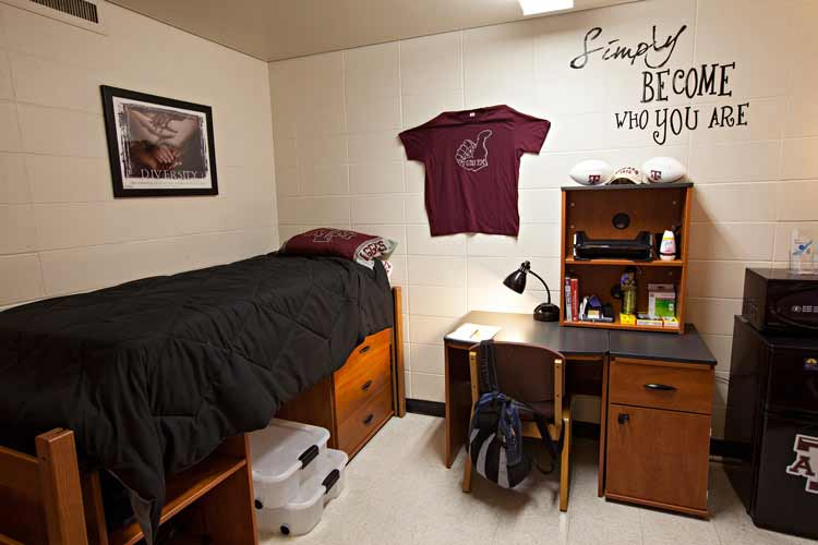Krueger Hall with lofted bed and student desk