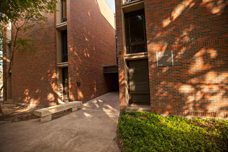 Clements Hall main entrance with shadows from trees