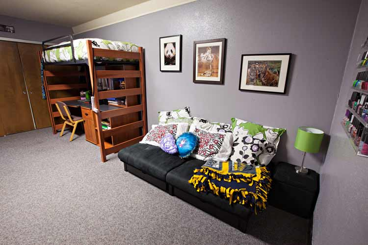 Haas Hall student room with futon and desk which is under a lofted bed