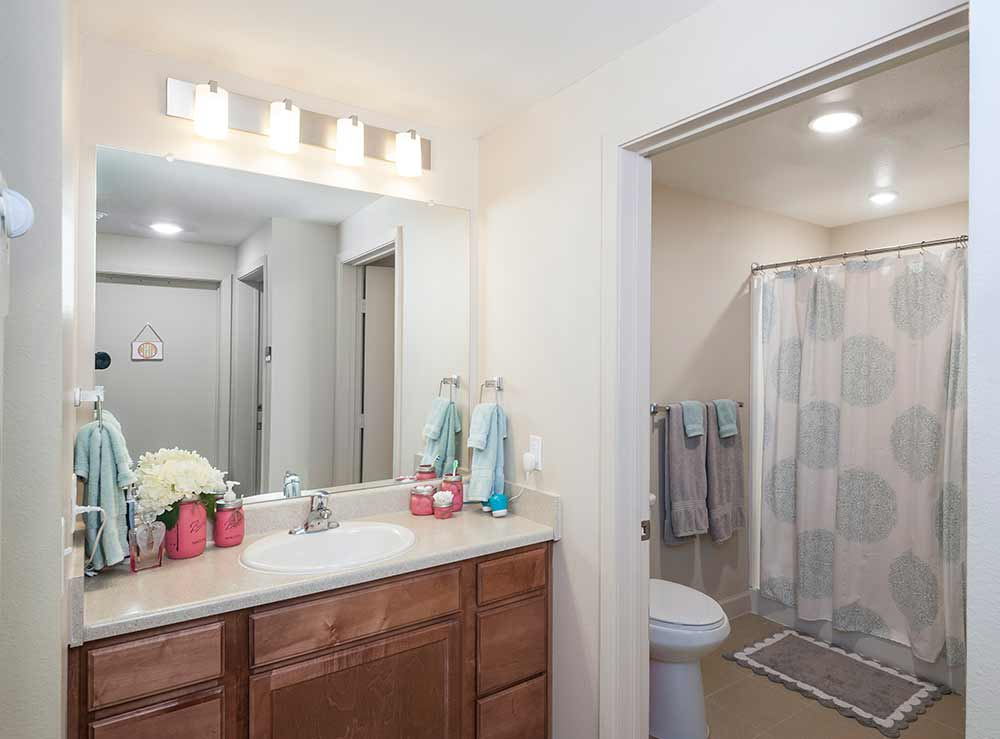apartments inside bathroom. White Creek Apartments Showroom Bathroom  Residence Life Texas A M University